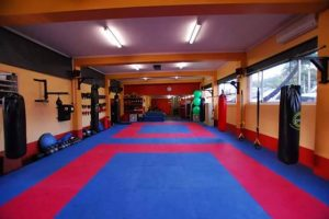 phong hoc vo karate vimido