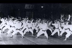 he-phai-suzucho-karatedo