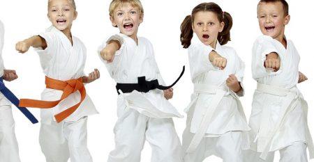 Dạy học võ thuật online